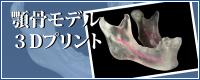 顎骨モデル3Dプリント